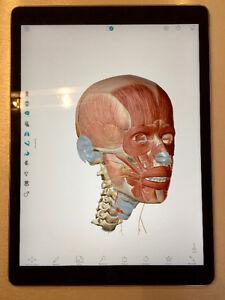 "iPad Pro 12.9"", 128 Go, Space grey"