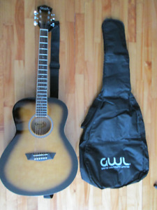 Guitare acoustique Washburn acoustic Guitar + Étuii + Accordeur