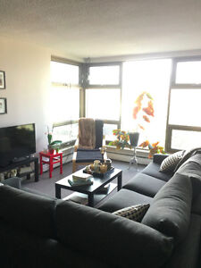 Beautiful Bright Sublet May 1st-August 31st