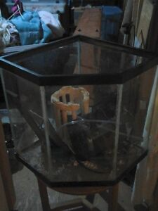 Wanted Corner Aquarium STAND to fit this tank.