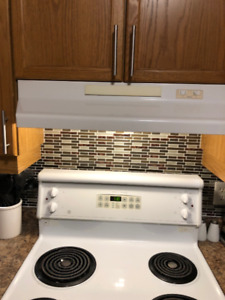 KITCHEN STOVE, DISHWASHER AND RANGE HOOD