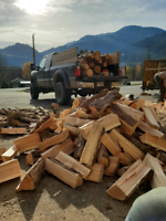 Winter Is here ...Firewood in your area