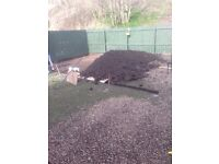 TOP SOIL / FREE TO COLLECT