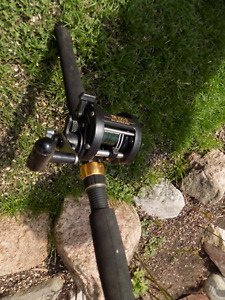2 - 9 ft.Downrigging Rods with Shimano Reels $100 each