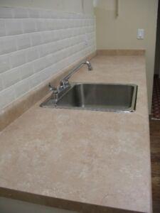 Arborite counter and sink