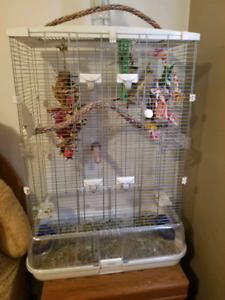 COCKTAIL, CAGE AND ACCESSORIES.