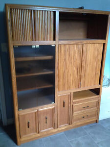 Entertainment unit and TV