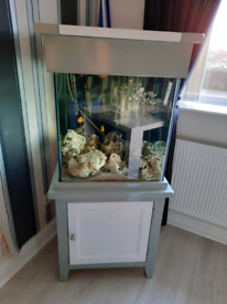 Solid oak cube fishtank