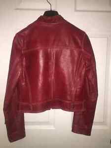 Renzo Costa Leather Jacket $100 OBO Regina Regina Area image 2