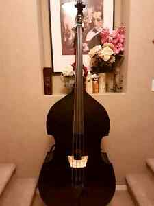 Stentor Harlequin Double Bass For Sale Strathcona County Edmonton Area image 1