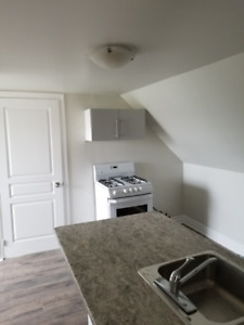 newly renovated 1 bedroom downtown hamilton 1000/all inclusive
