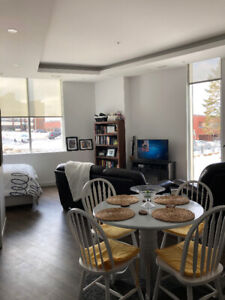 The Pearl- Large Downtown Studio Apartment- May 1 Lease Takeover