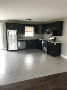 3 bedroom duplex for rent - available November 1st