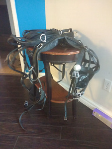 Horse sized buggy leather driving harness