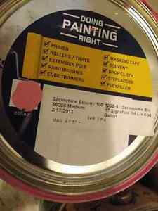 4 Cans of paint