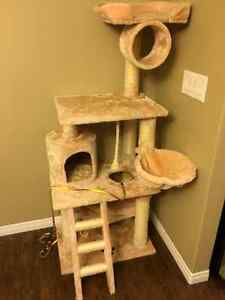 cat tree and cat scratching post