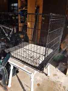 Dog Cages for sale London Ontario image 3