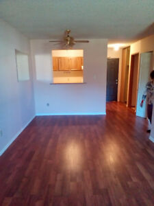 1 Bedroom Apartment in D/T Fruitvale, BC