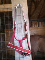 Horse stuff for sale