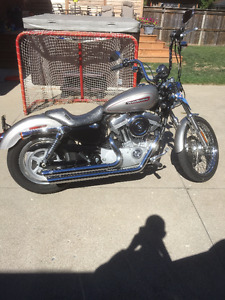 2009 Harley Davidson Sportster 883C