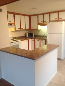 CASSELMAN,  GRAND UNE CHAMBRE RENOVATED ONE BEDROOM APARTMENT