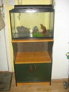 1 grand aquarium 20 Gal équipé et son meuble  avec 60 Guppys et+