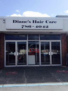 Looking for a Hair Stylist in a Busy Salon St. John's Newfoundland image 1