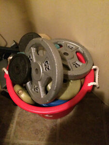 Large bin of various sizes & plates of weights. Plastic & Steel