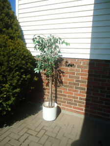 ARTIFICIAL TREE - 6 FT. TALL