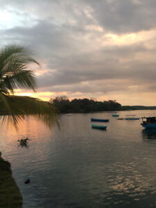 House for sale in Costa Rica Puerto Jimenez