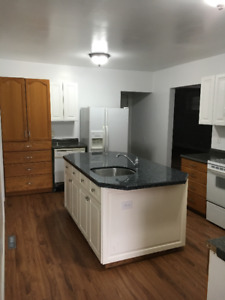 3 Bedroom Suite - July 1st - Main Floor - Avenues - Quiet - Pets