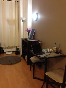 Apartment Sublet in Downtown Montreal!
