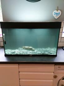 Juwel 125l fish tank aquarium