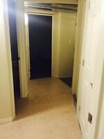 BRAND NEW Basement Suite-Daly Grove (Millwoods)-July 1