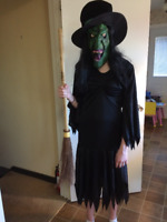 Halloween Costume  - Ugly Witch