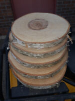 White birch wood cookie slabs
