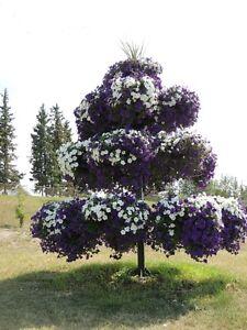 Brand New, Steel, Petunia Tree or Flower Tree.   Holds 16 Pots.