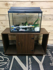 20 Gallon Fish Tank with Stand and Accessories