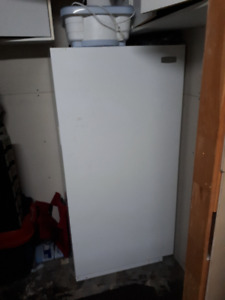 "Stand up freezer, 59"" high by 28"" wide 14 cu. ft."