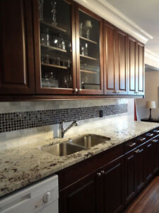 Beautiful Furnished One Bedroom Condo near Whyte Ave & U of A