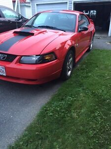 2004 Mustang in St Stephen