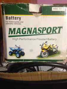 Battery for Motorcyles & Specialty Vehicles **NEW ITEM**