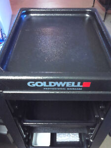 GOLDWELL TROLLEY WITH SIDE POCKETS TO HOLD PRODUCTS Kingston Kingston Area image 4
