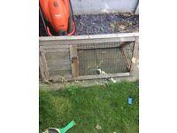 Rabbit/Guinea hutch