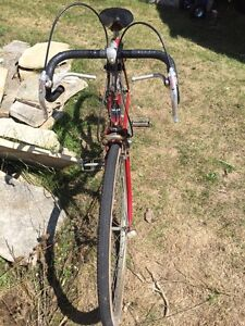 Classic Canadian Tire 10 speed bike