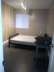 multiple bedrooms for rent in a house