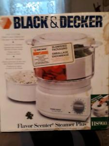 Black&Decker flavor scenter steamer plus
