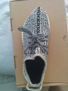 Authentic Yeezy 350 Boost Turtle Doves