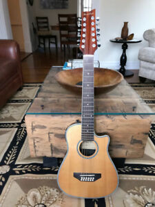 12 String Acoustic-Electric Guitar with Case