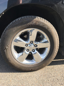 LOOKING FOR DODGE BIG HORN RIMS